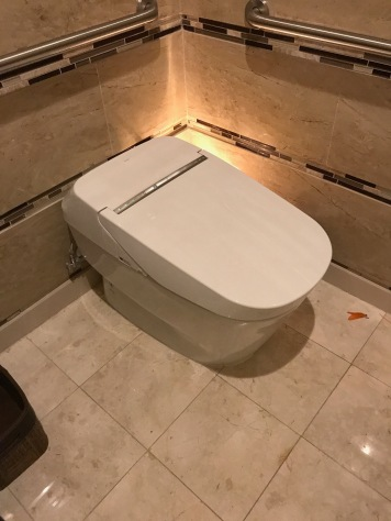 It opens as you walk up to it, is warmed, has a bidet, and flushes and closes automatically as well.