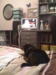 He learned to like watching TV